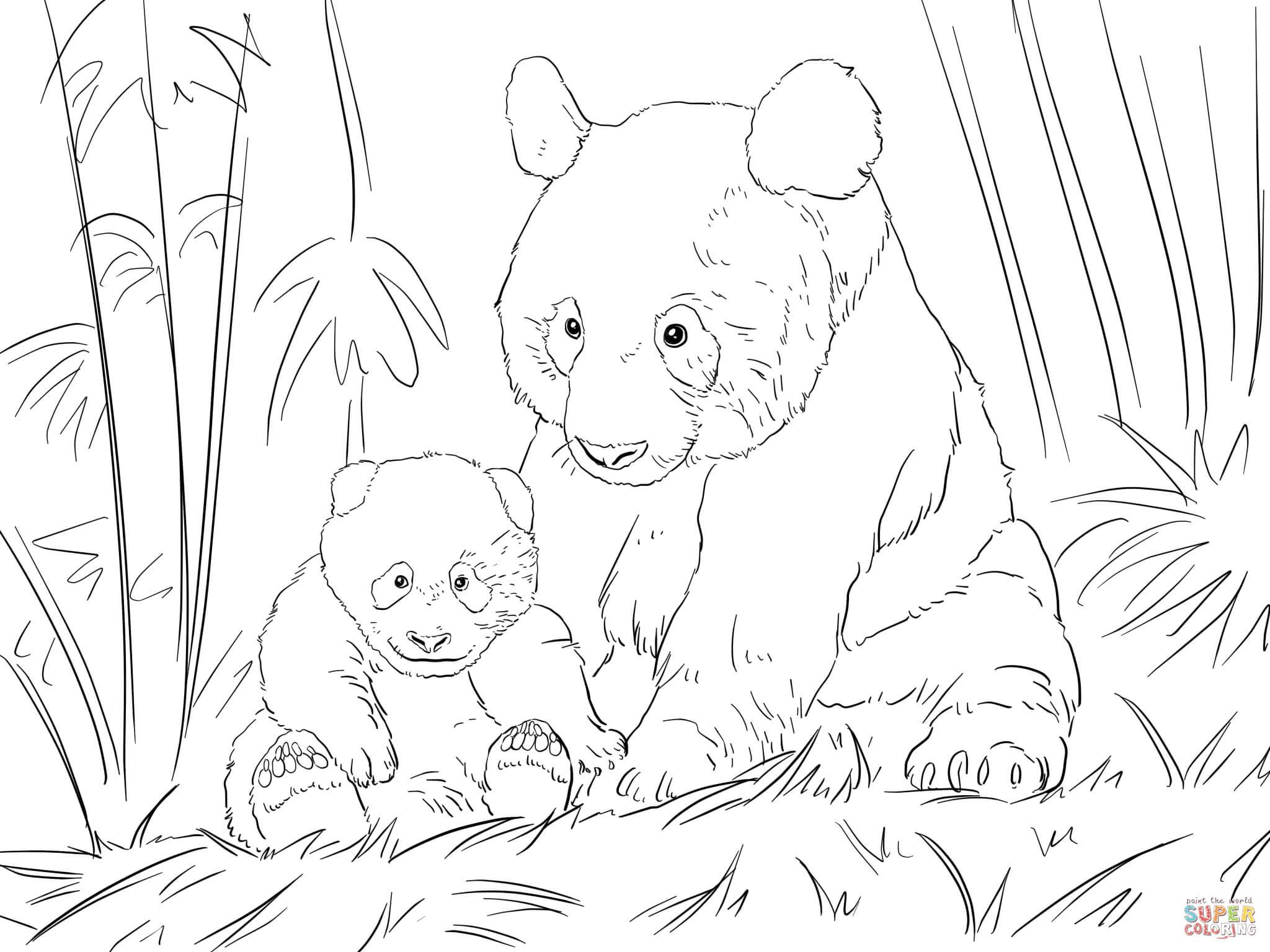 Coloriage - Famile Panda Mignonne | Coloriages À Imprimer dedans Panda À Colorier