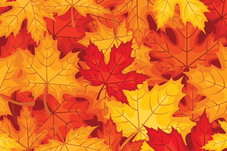 Coloriage Feuilles D'automne Sur Hugolescargot dedans Dessin De Feuille D Automne