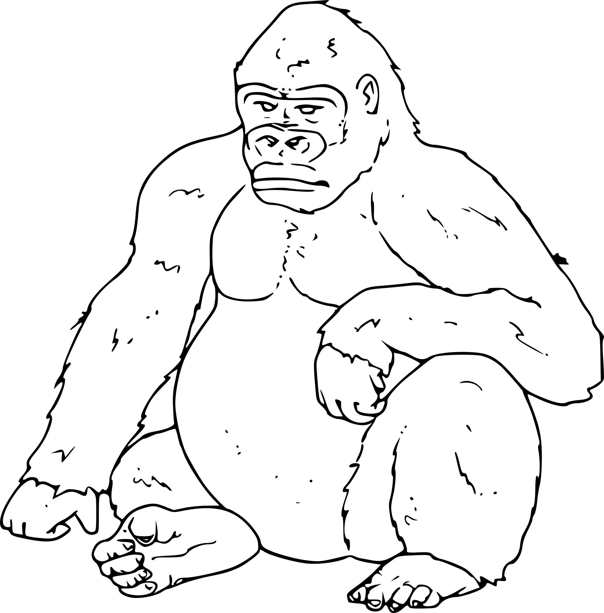 Coloriage Gorille À Imprimer destiné Coloriage Gorille