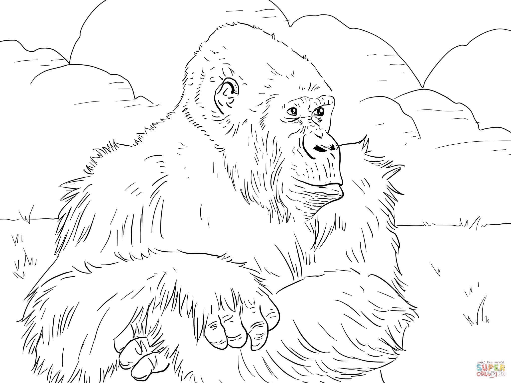 Coloriage - Gorille Des Montagnes | Coloriages À Imprimer encequiconcerne Coloriage Gorille