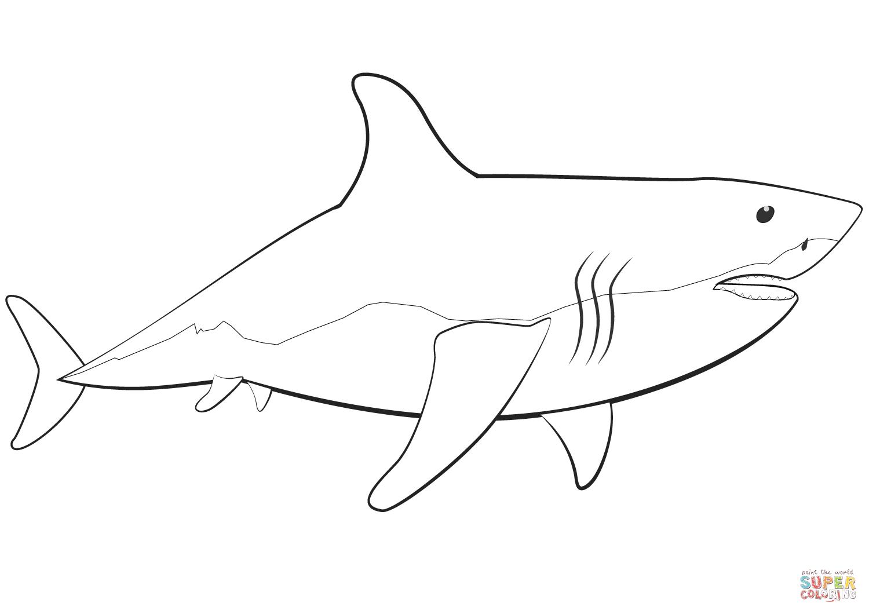 Coloriage - Grand Requin Blanc | Coloriages À Imprimer Gratuits pour Coloriage Requin À Imprimer