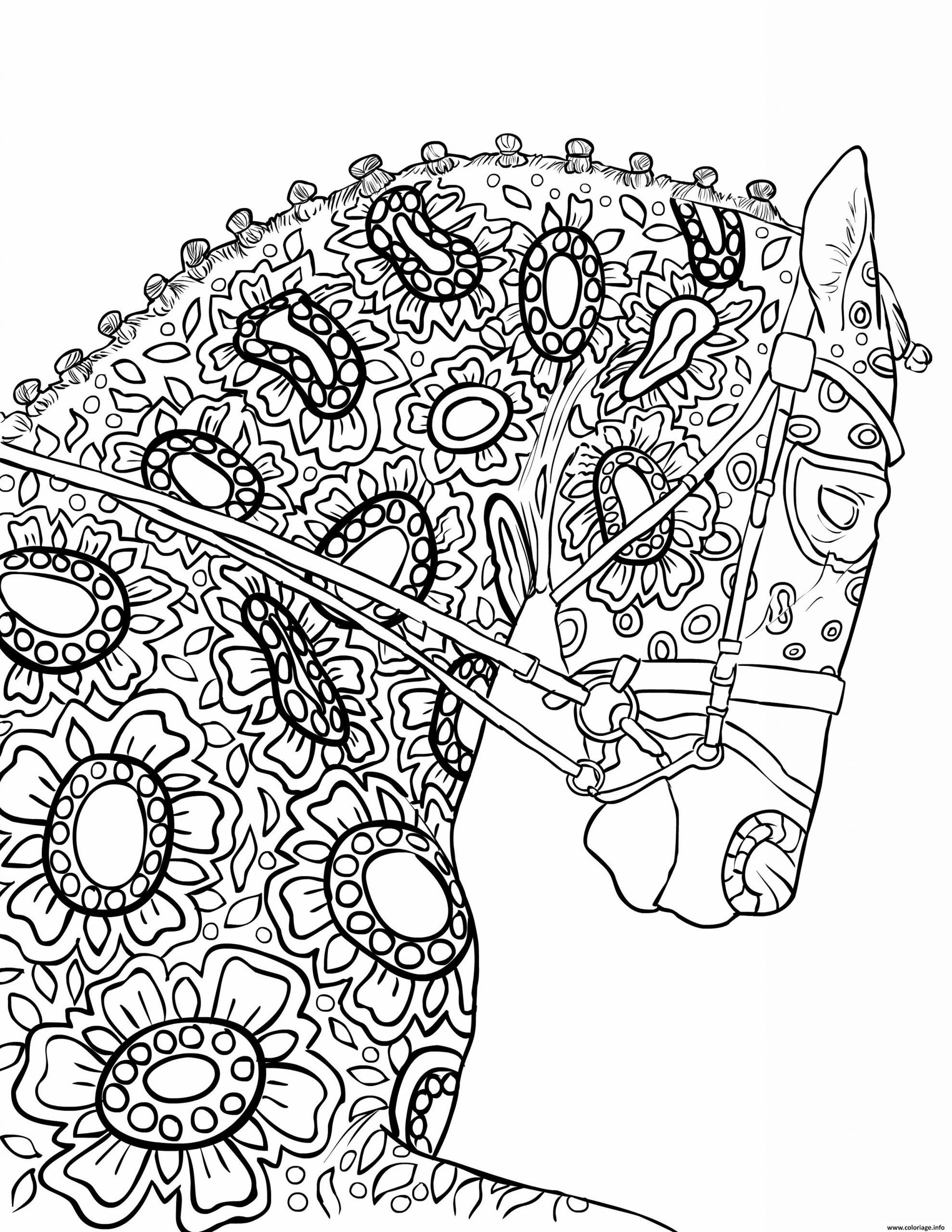 Coloriage Magnifique Cheval Pour Adulte Mandala Dessin avec Dessin A Imprimer Pour Adulte