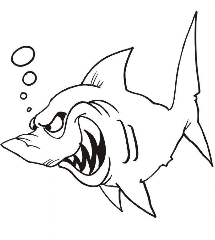 Coloriage Méchant Requin À Imprimer Et Colorier avec Dessin De Requin À Imprimer