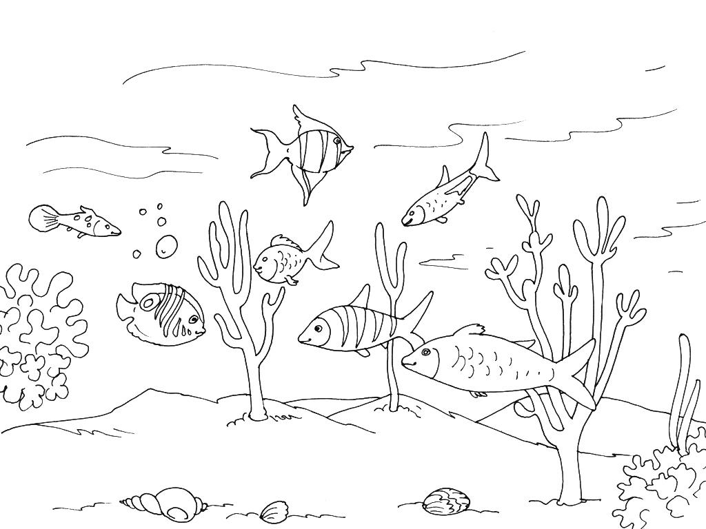 Coloriage Mer - Les Beaux Dessins De Nature À Imprimer Et concernant Coloriage Sur La Mer À Imprimer