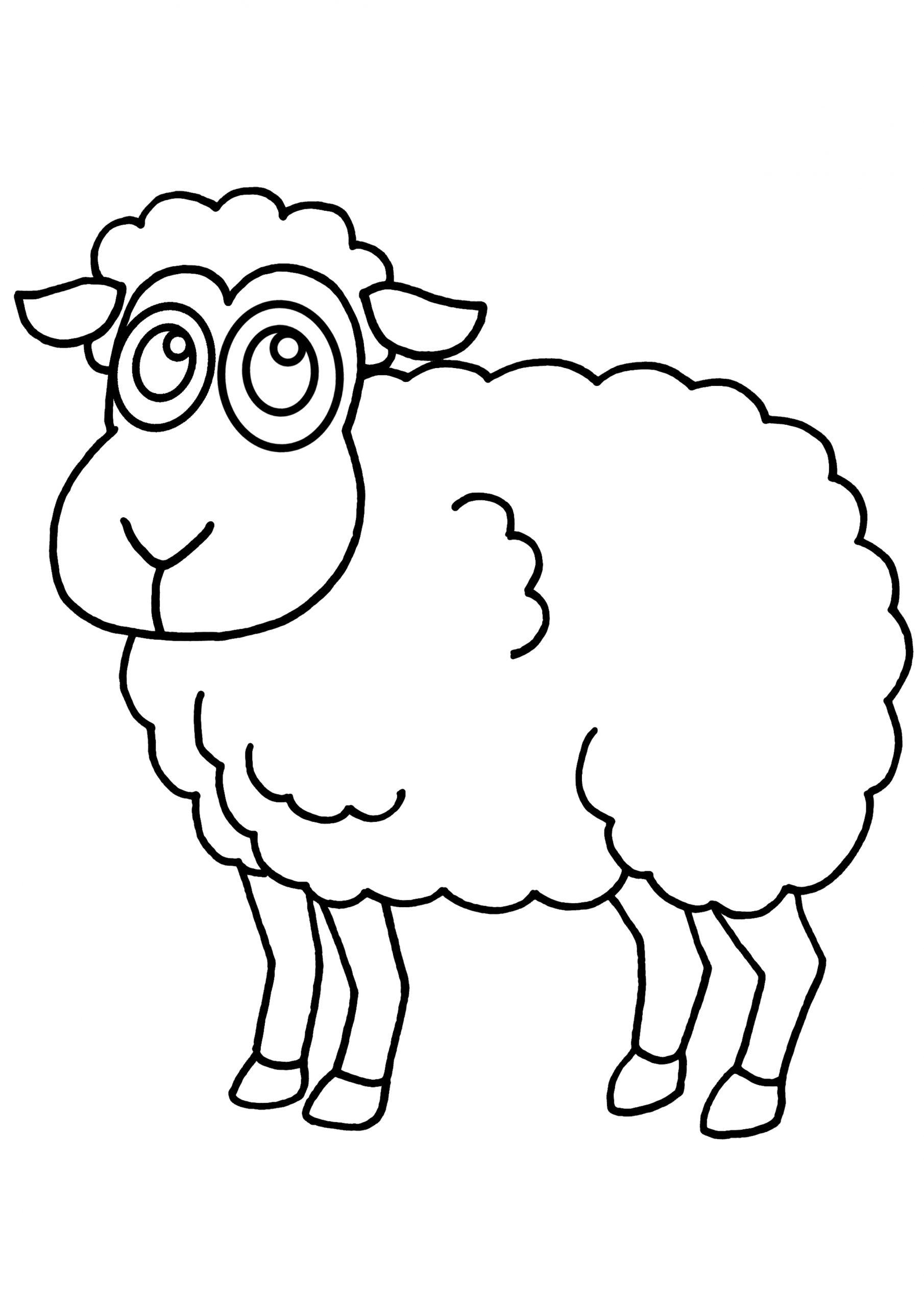 Coloriage Mouton - Les Beaux Dessins De Animaux À Imprimer tout Photo De Mouton A Imprimer
