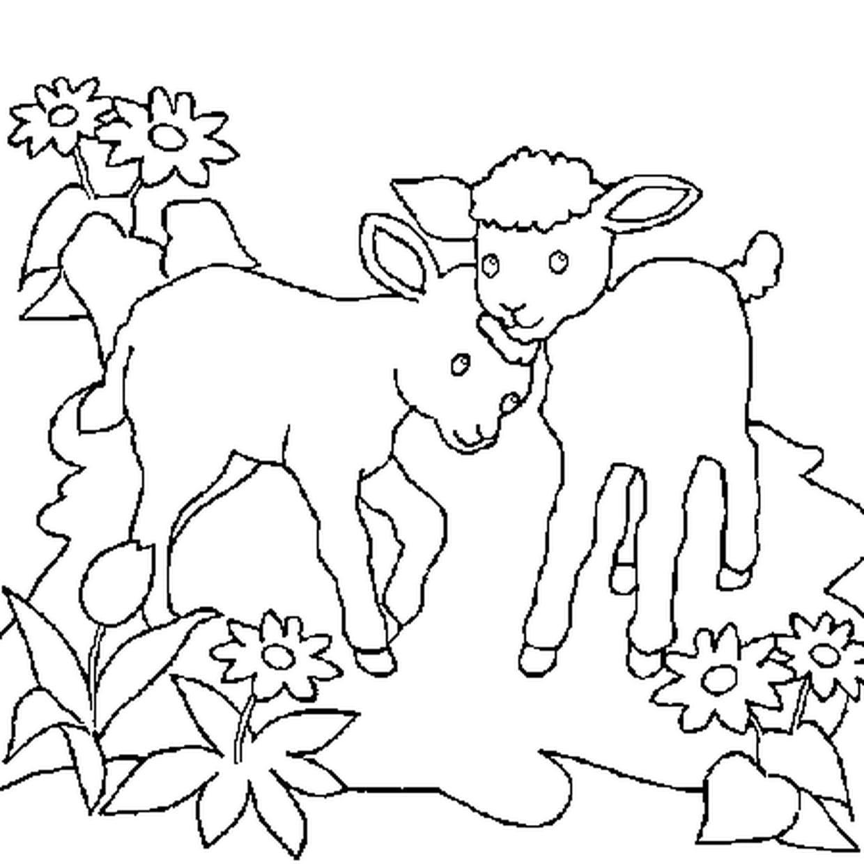 Coloriage Moutons En Ligne Gratuit À Imprimer tout Photo De Mouton A Imprimer