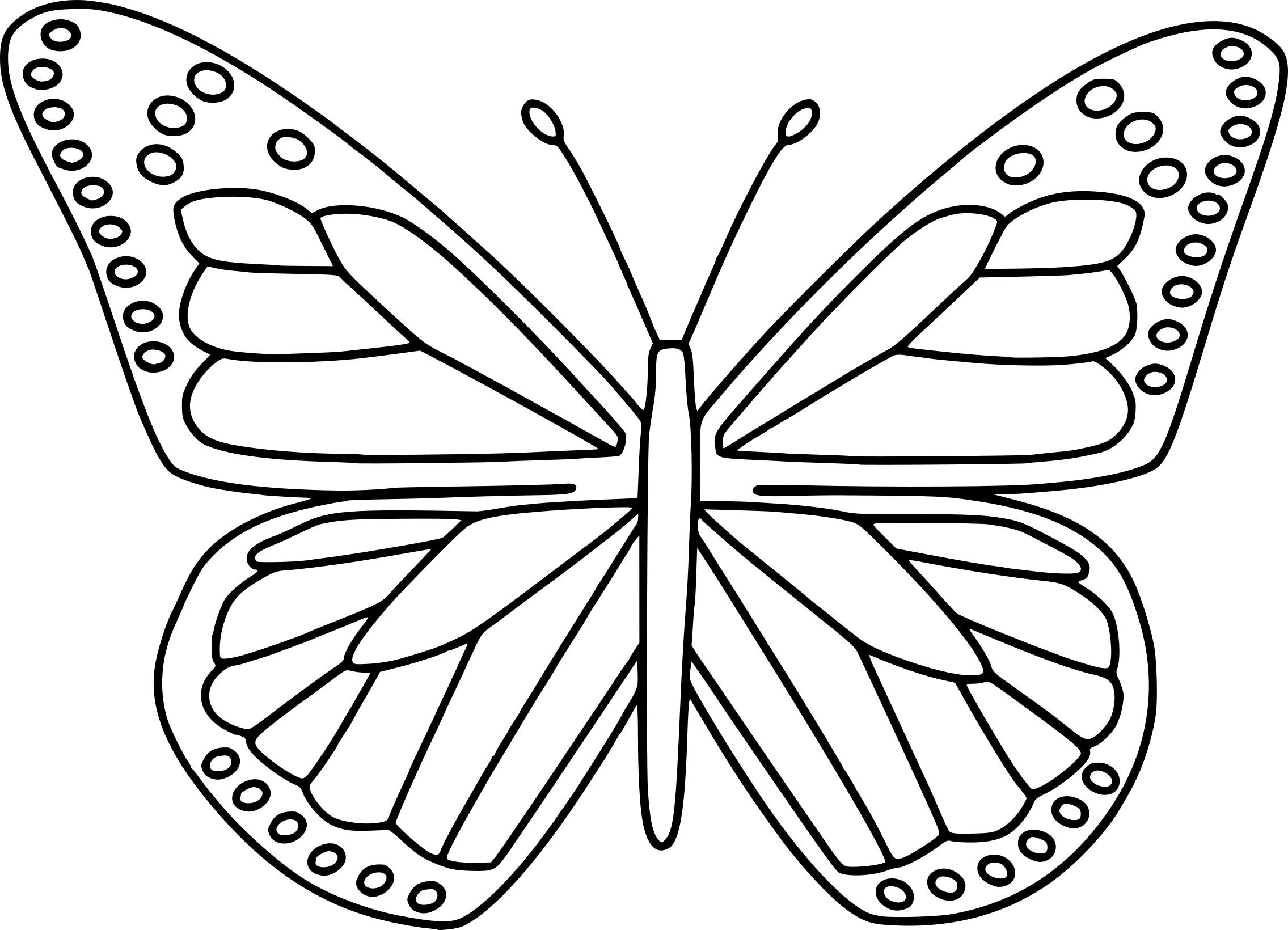 Coloriage Papillon Et Dessin À Imprimer destiné Dessin Papillon À Colorier