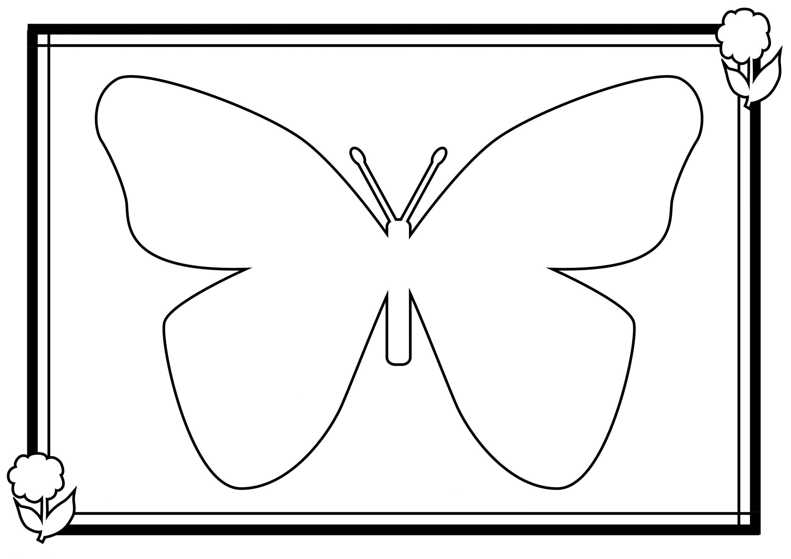 Coloriage Papillon - Les Beaux Dessins De Animaux À Imprimer à Dessin Papillon À Colorier