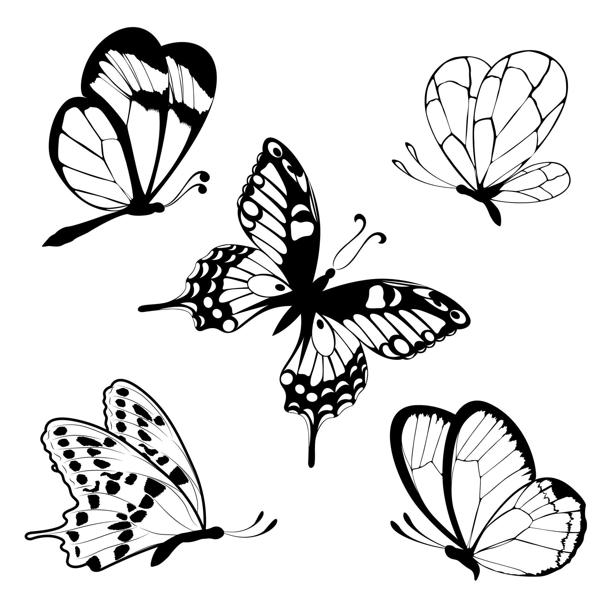 Coloriage Papillons - Facile dedans Papillon À Dessiner