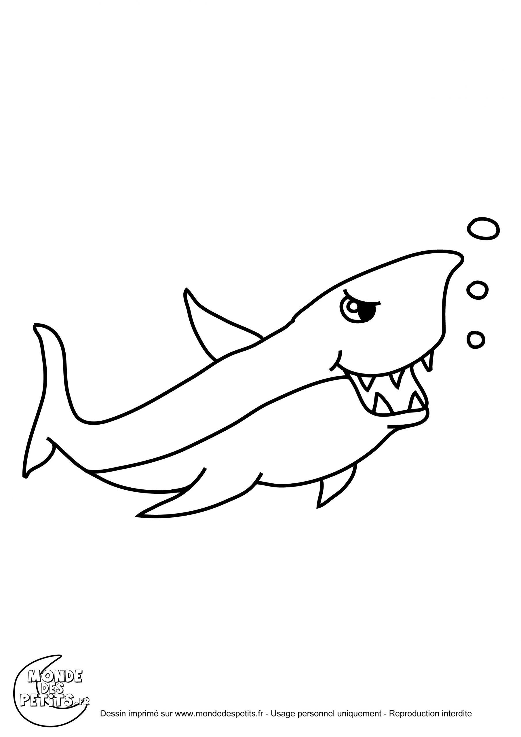Coloriage Requin Blanc pour Coloriage Requin Blanc Imprimer