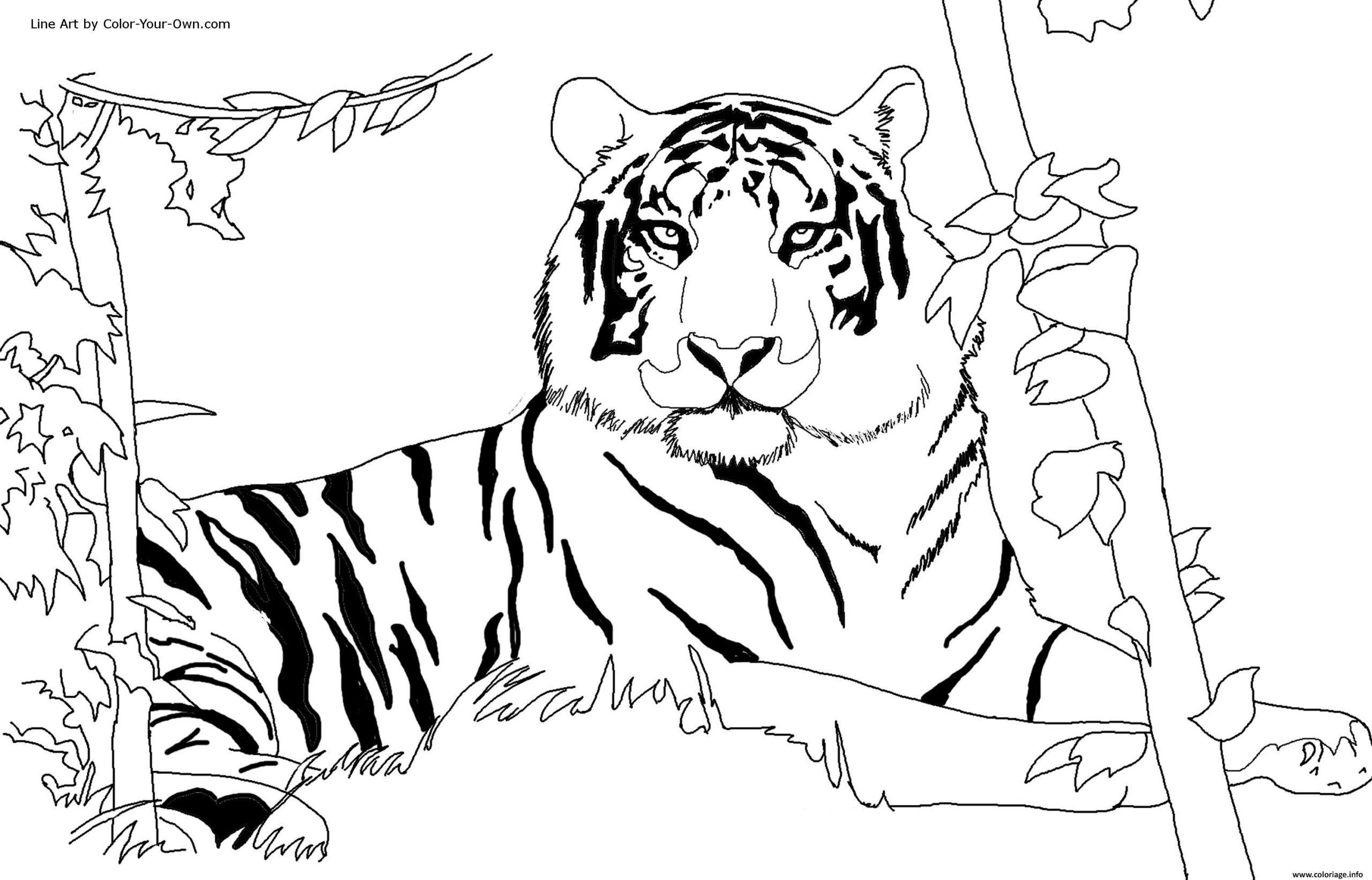Coloriage Tigre Afrique Dans Son Habitat Naturel Dessin tout Coloriage Afrique À Imprimer
