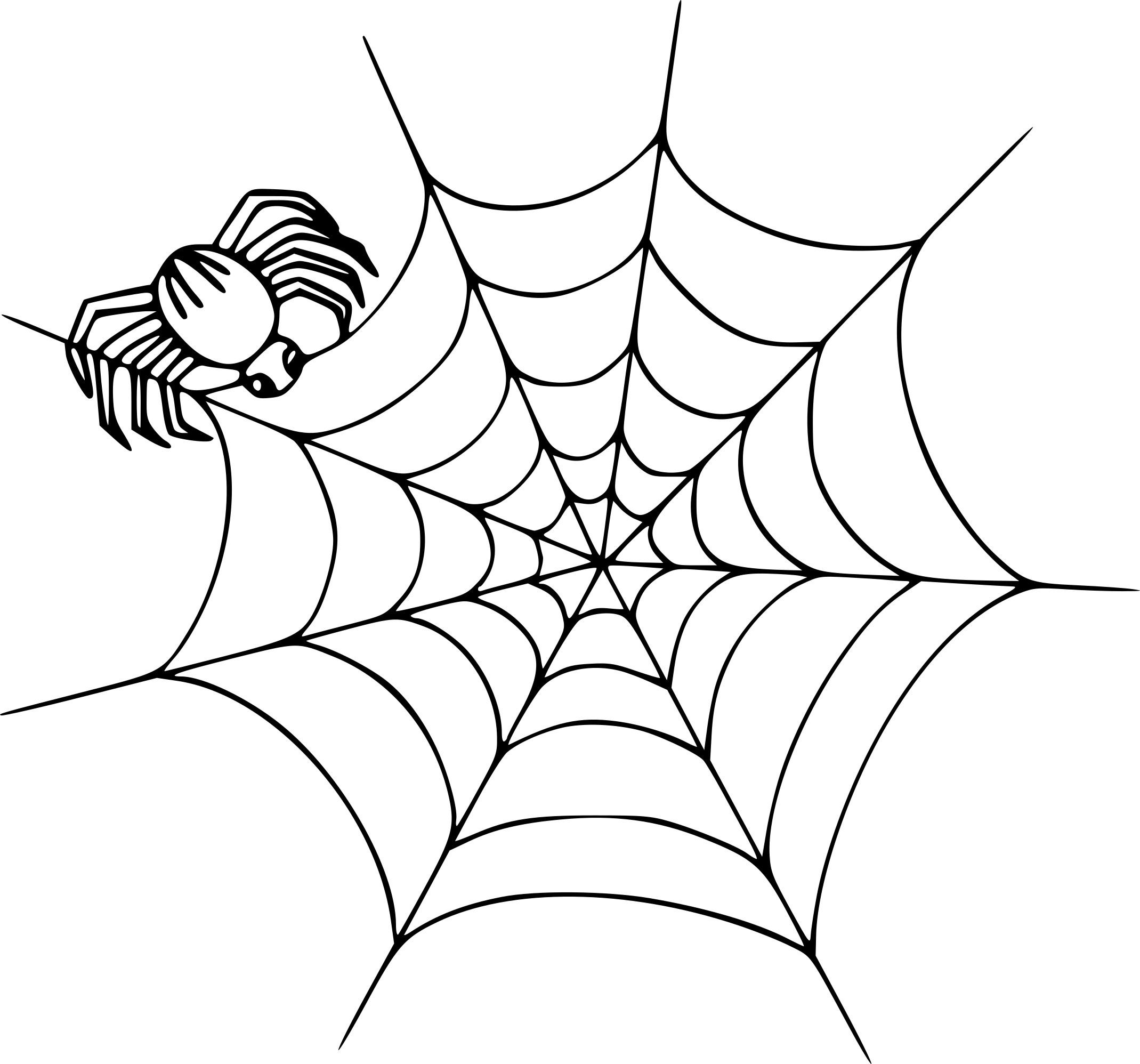 Coloriage Toile D'araignée À Imprimer à Dessiner Une Araignee