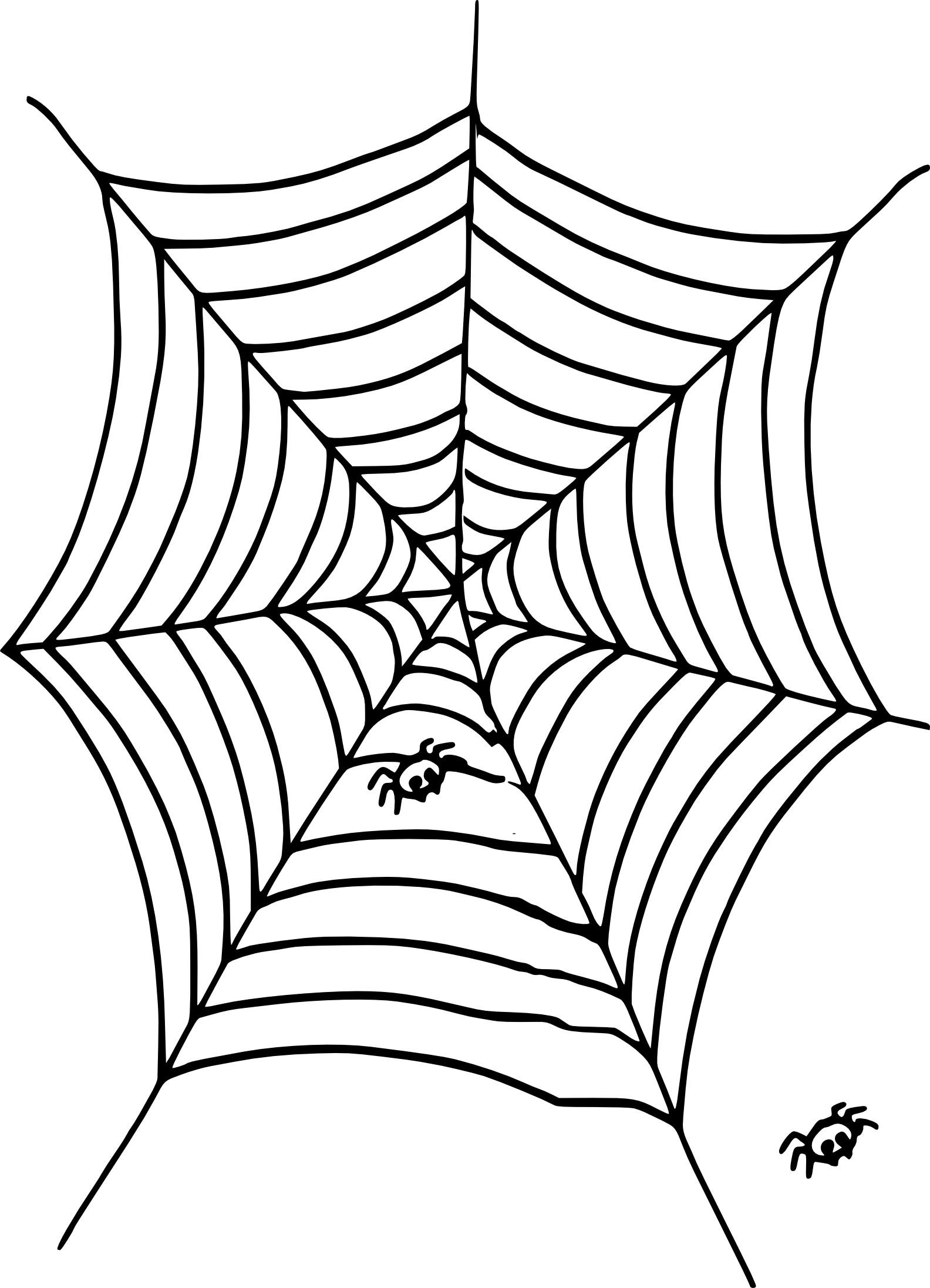 Coloriage Toile D'araignée À Imprimer concernant Toile D Araignée Dessin