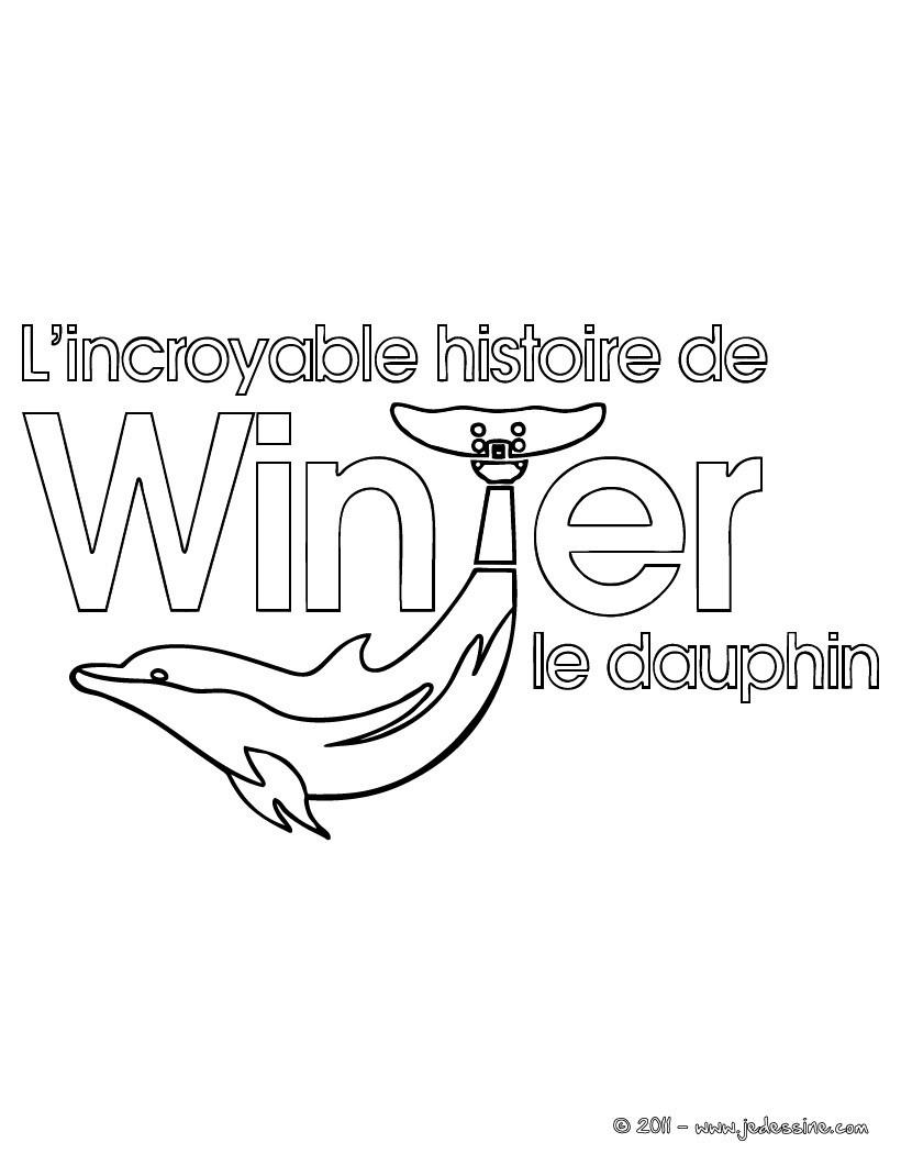 Coloriage Winter Le Dauphin - Coloriages - Coloriage À pour Dessin Dauphin À Imprimer