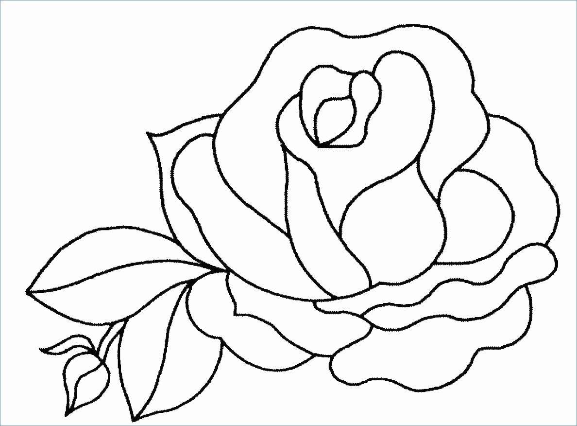 Coloriages À Imprimer : Kirby, Numéro : A383Eb72 à Coloriage Aspirateur