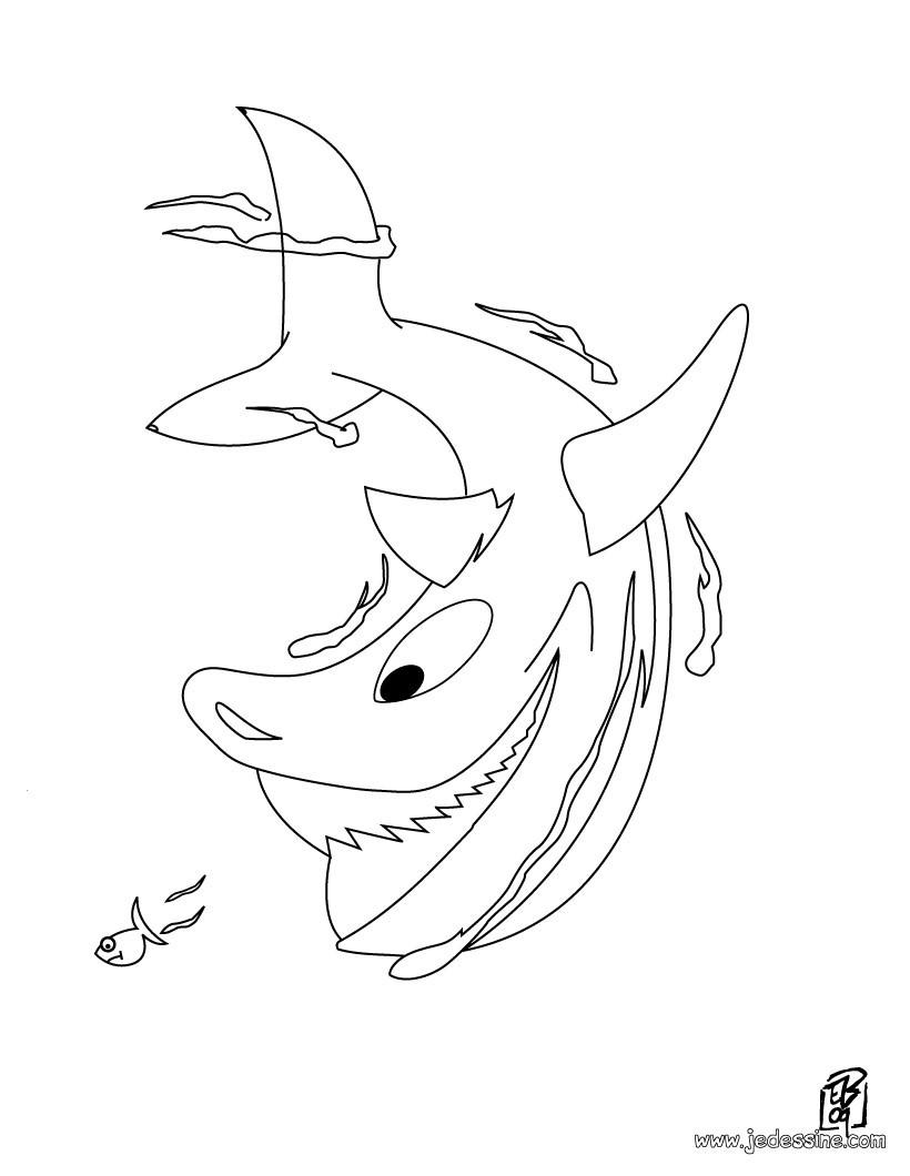 Coloriages Coloriage D'un Requin - Fr.hellokids à Dessin De Requin À Imprimer