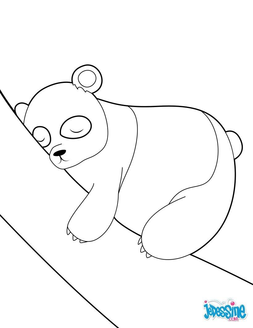 Coloriages De Pandas - Coloriages - Coloriage À Imprimer à Panda À Colorier