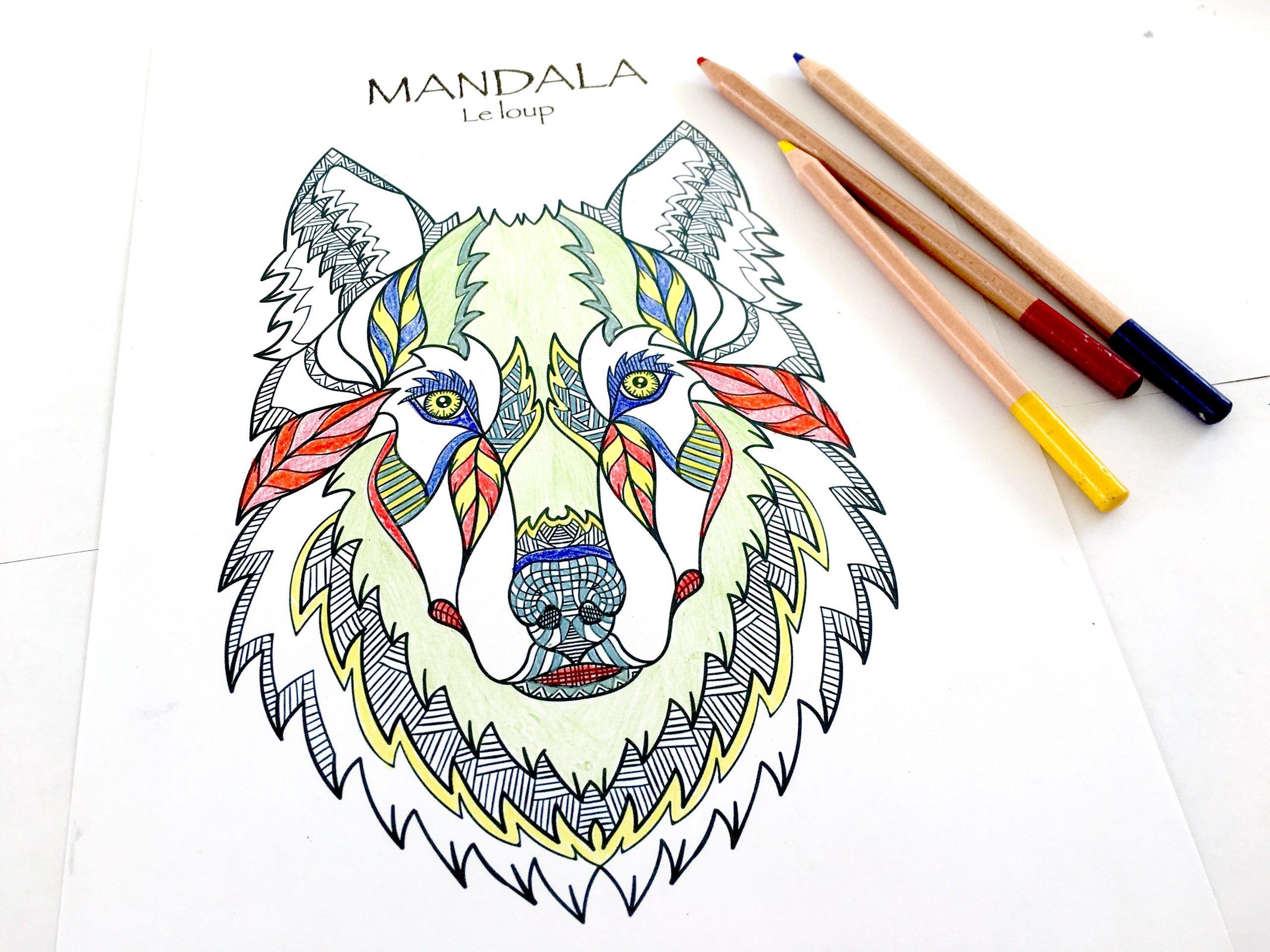 Coloriages Mandalas Animaux À Télécharger, Pour Enfants Et intérieur Jeux Des Différences À Imprimer Pour Adultes