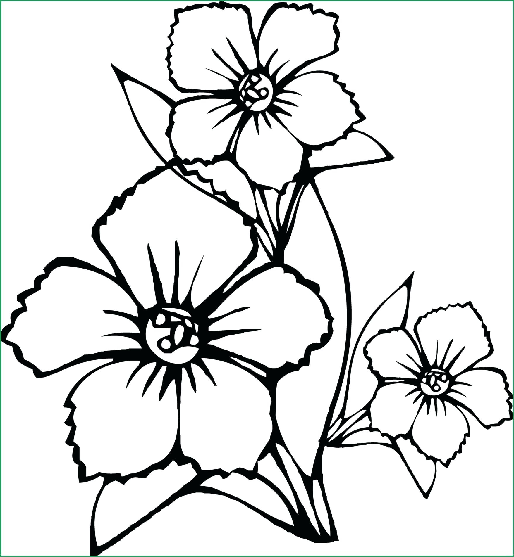 Coloring Pages : Coloring Awesome Stress Relief Flower Image à Mandala Fée