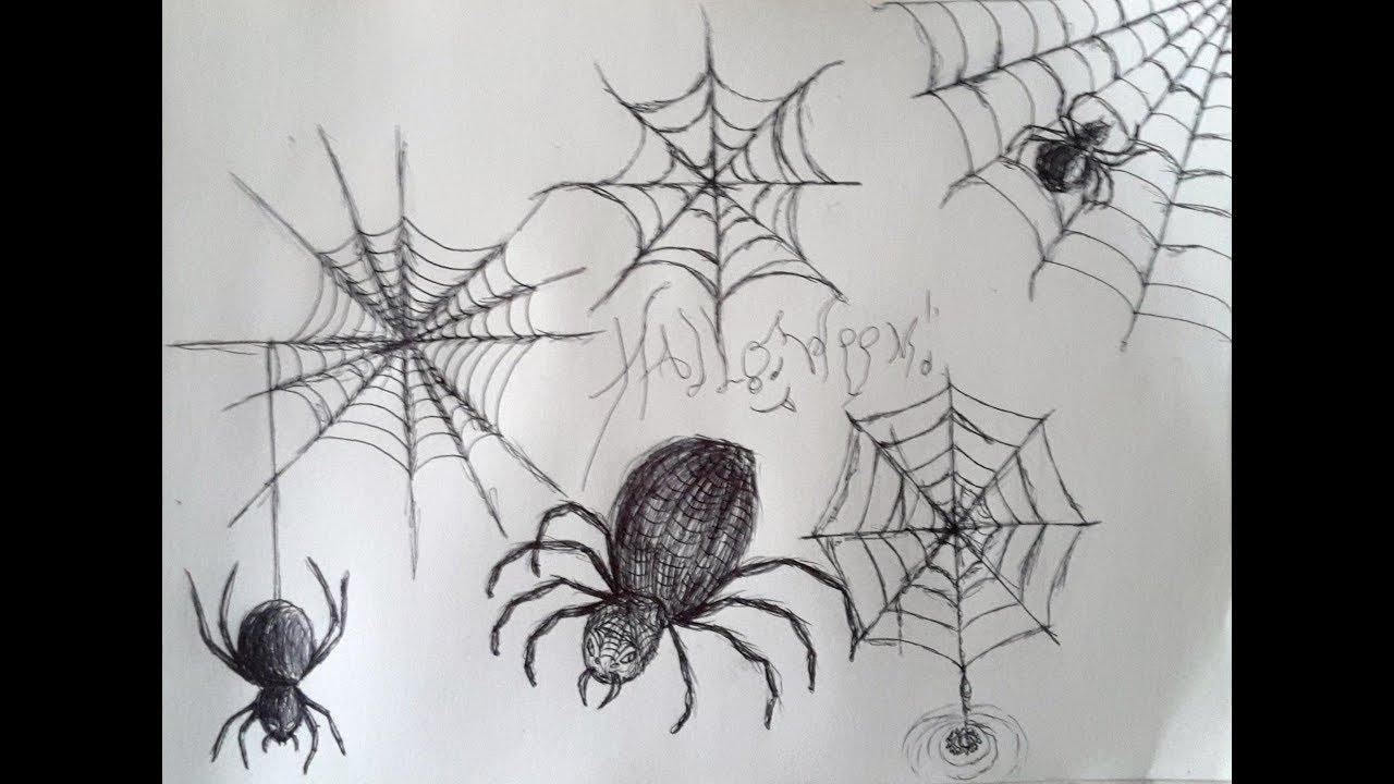Comment Dessiner Des Toiles D'araignée Et Des Araignées [Bic pour Dessin Toile Araignée