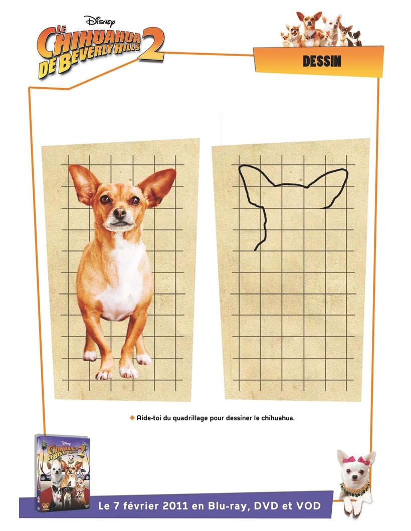 Comment Dessiner Dessiner Le Chihuahua De Beverly Hills - Fr pour Dessin Sur Quadrillage