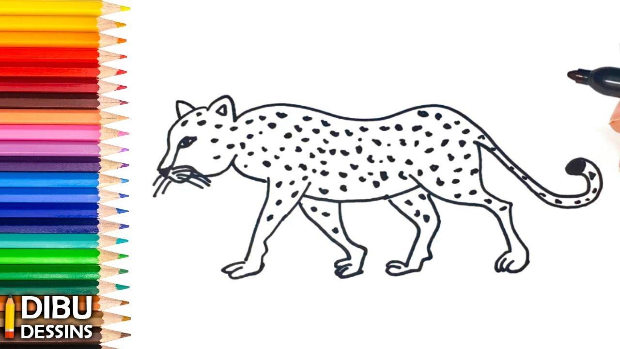Comment Dessiner Un Léopard | Dessin De Léopard intérieur Guépard Dessin