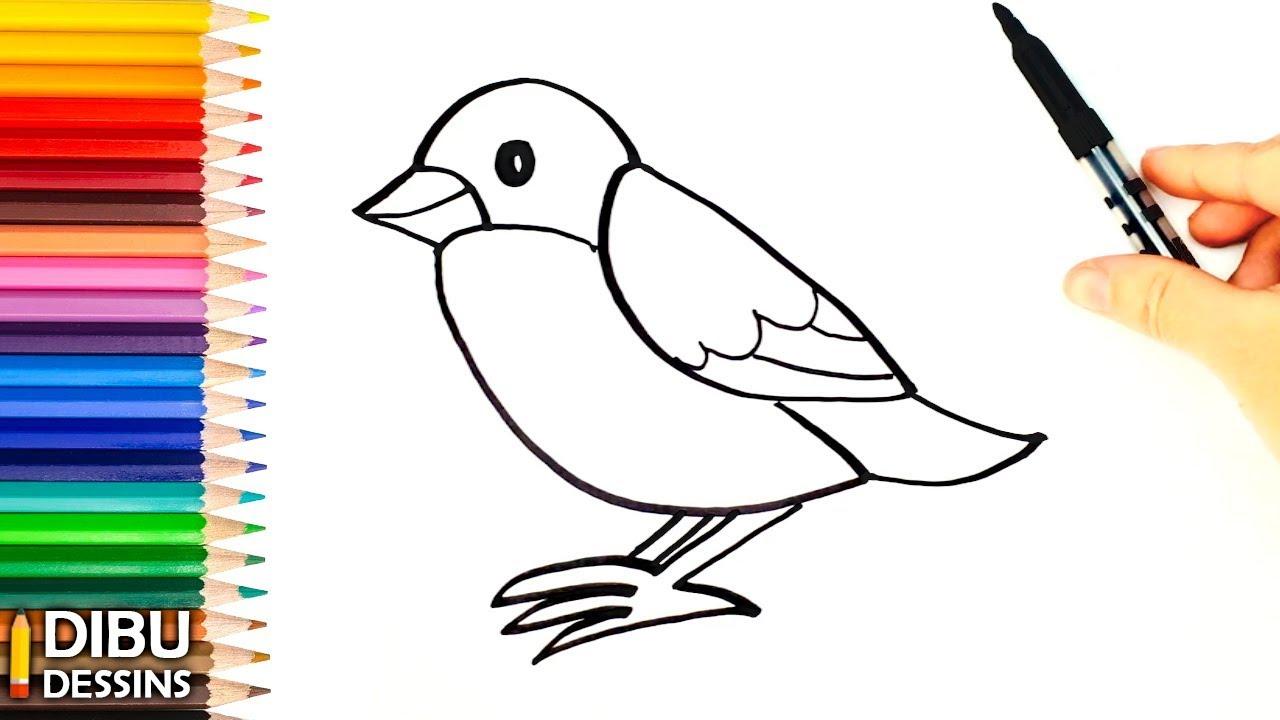 Comment Dessiner Un Oiseau | Dessin De Oiseau avec Dessin D Oiseau Simple