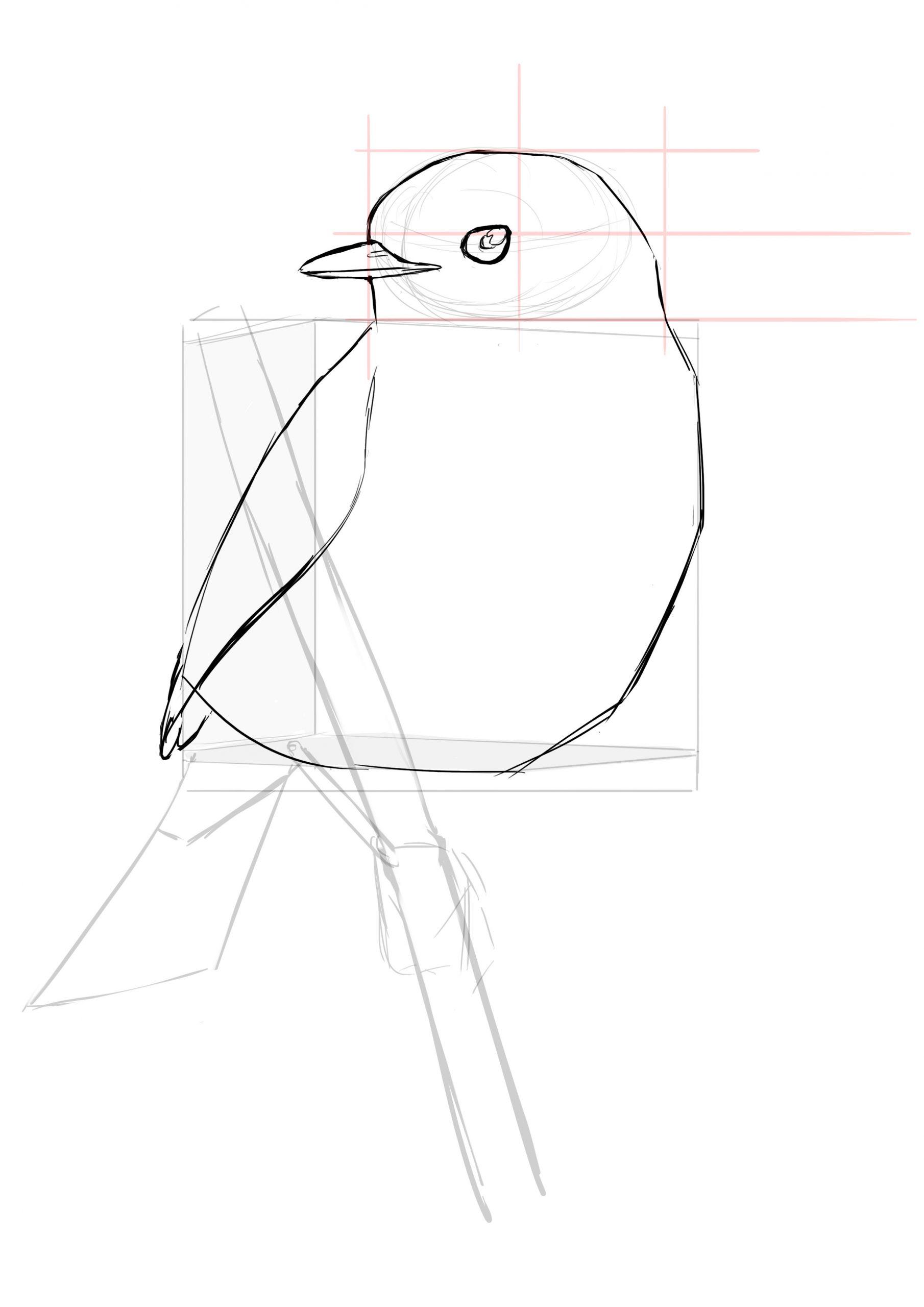Comment Dessiner Un Oiseau Facilement - Dessindigo dedans Dessin D Oiseau Simple