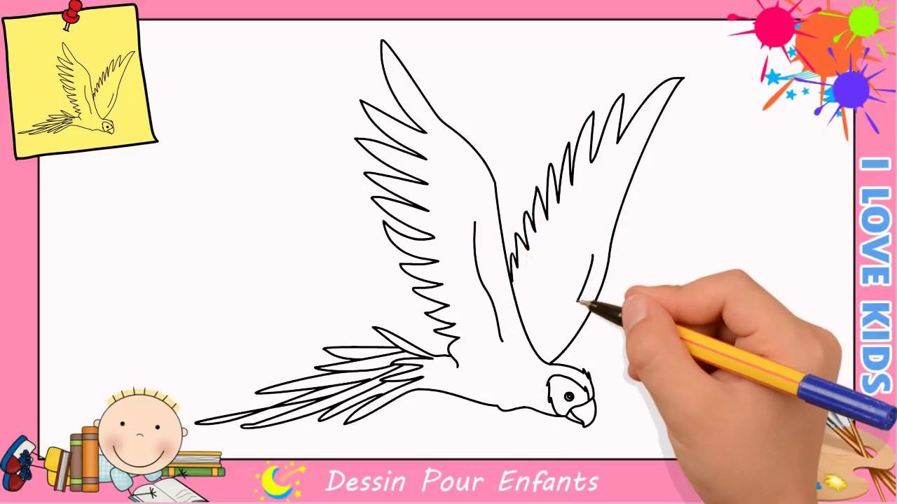 Comment Dessiner Un Perroquet Qui Vole Facilement Etape Par Etape 2 serapportantà Dessin D Oiseau Simple
