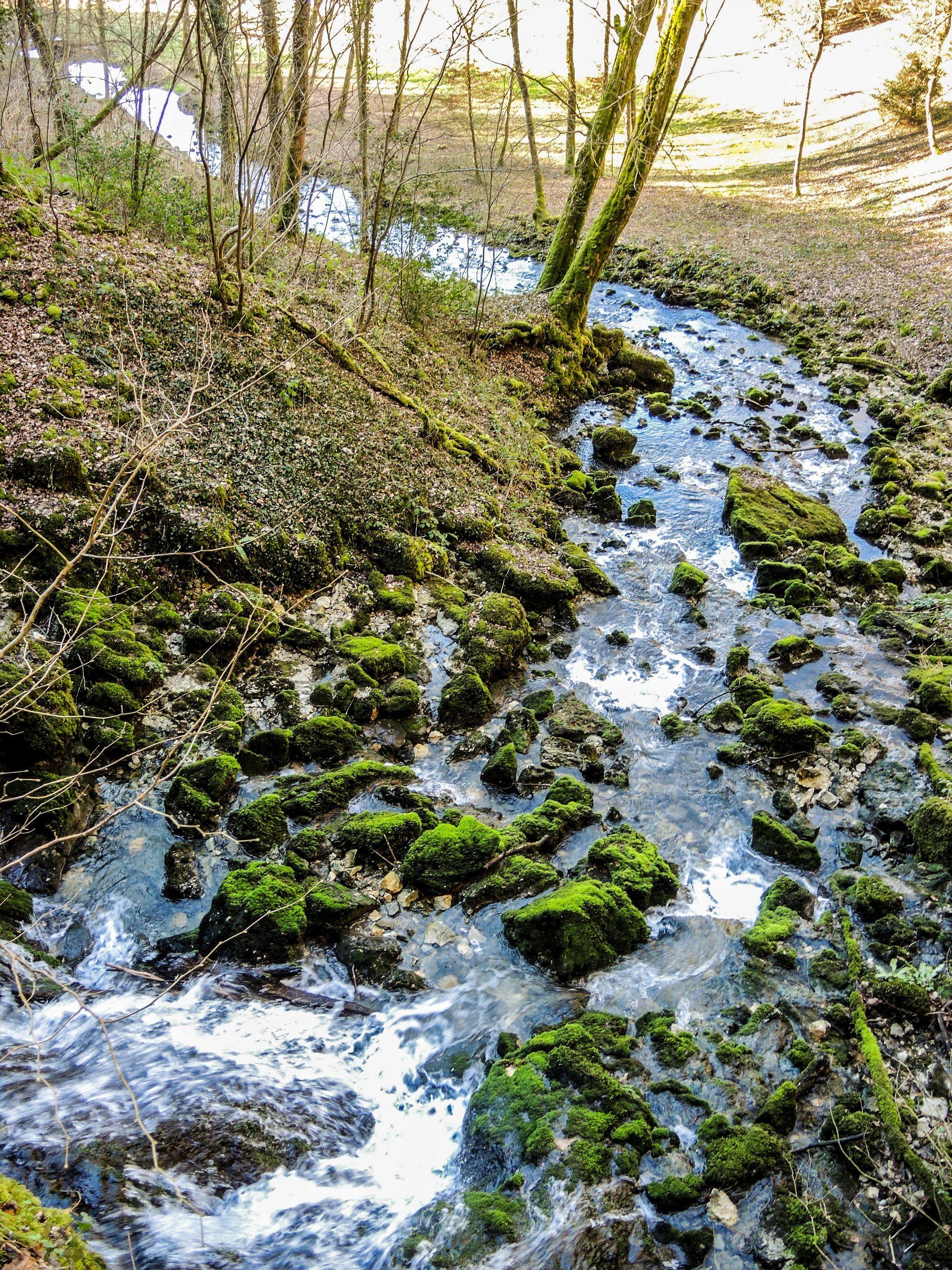 Cours D'eau — Wikipédia concernant Les Fleuves En France Cycle 3