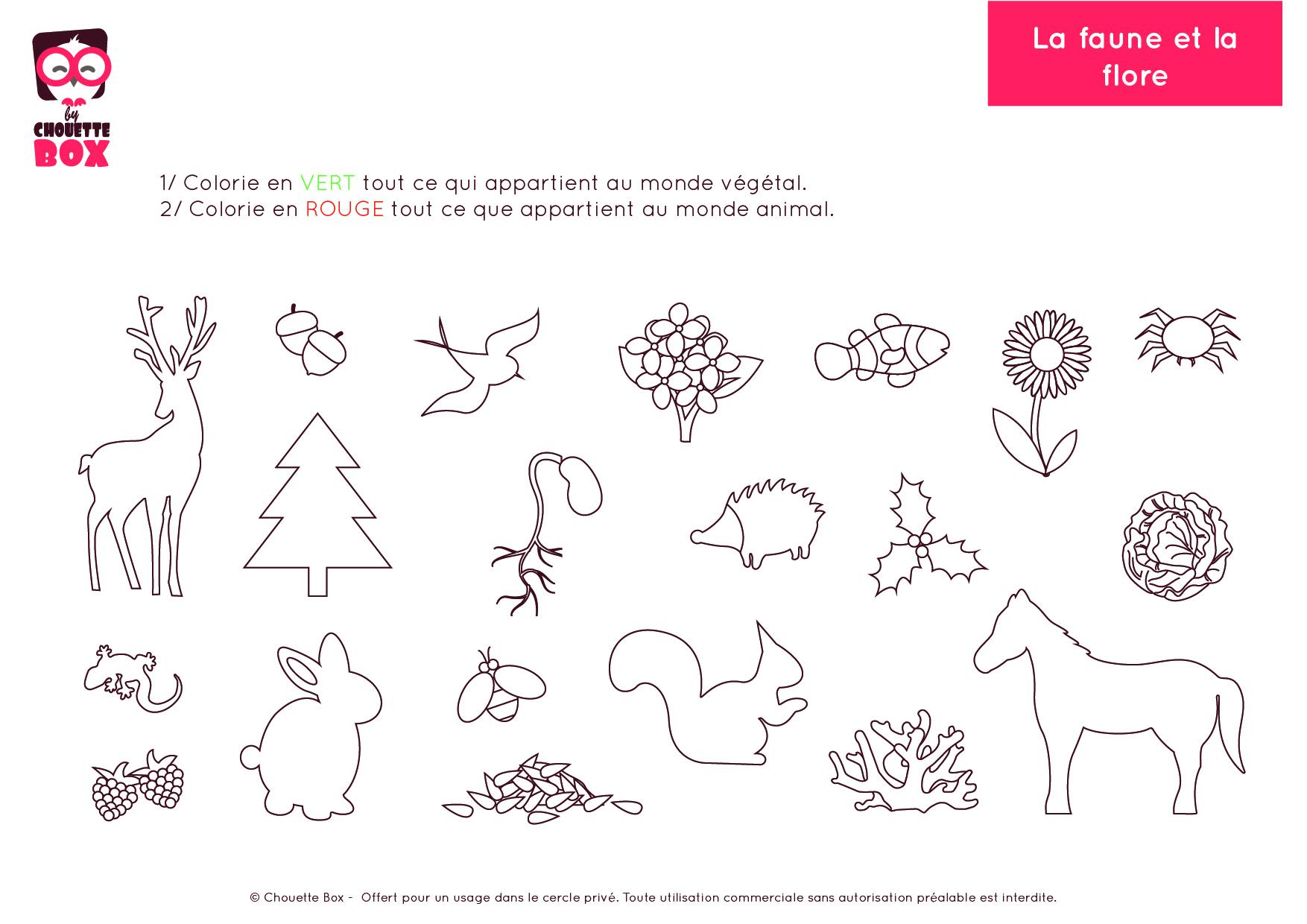 Cuisine: Activitã©S Montessori à Imprimer Autour Du à Activités Maternelle À Imprimer