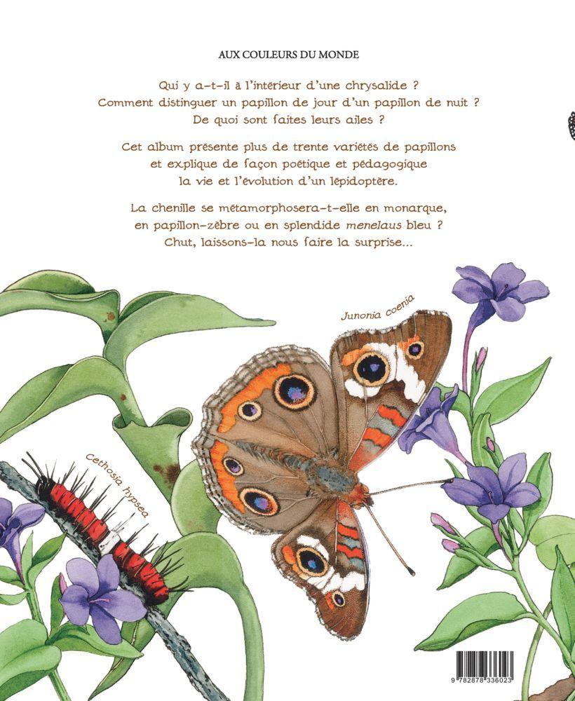 Cycle De Vie Du Papillon - Partie 1 | Activités Enfants serapportantà Cycle De Vie D Une Chenille