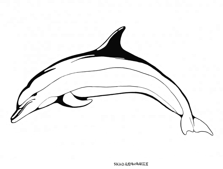 Dauphin #112 (Animaux) – Coloriages À Imprimer destiné Dessin De Dauphin À Colorier