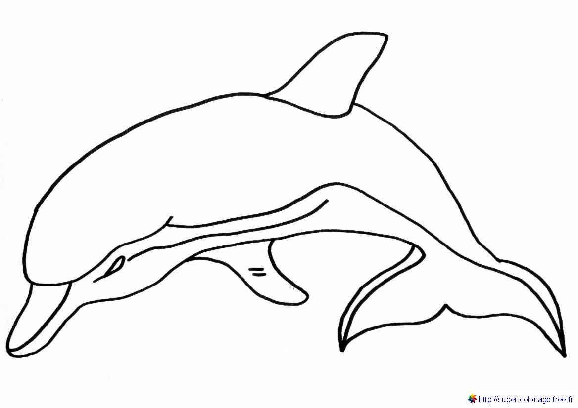 Dauphin #85 (Animaux) – Coloriages À Imprimer tout Dessin Dauphin À Imprimer