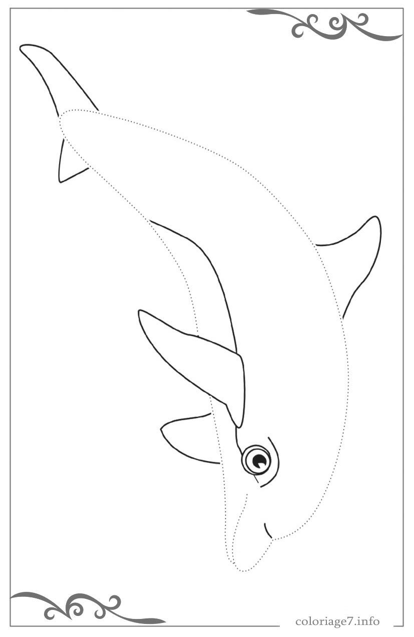 Dauphins Coloriages Simples Avec De Larges Contours Pour Les destiné Dessin Dauphin À Imprimer