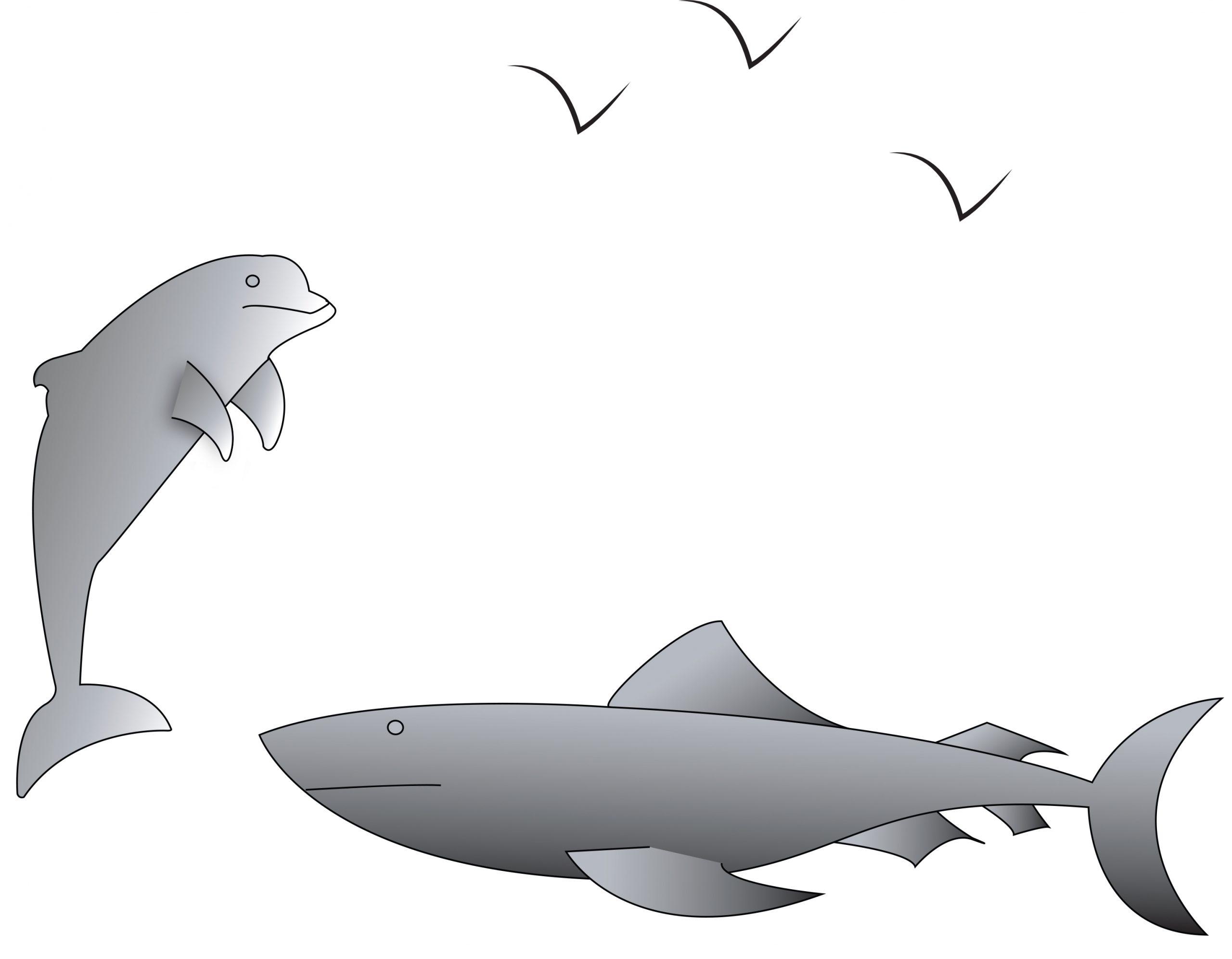 Décors Jeu Vidéo | Jao45 à Requin Jeux Video