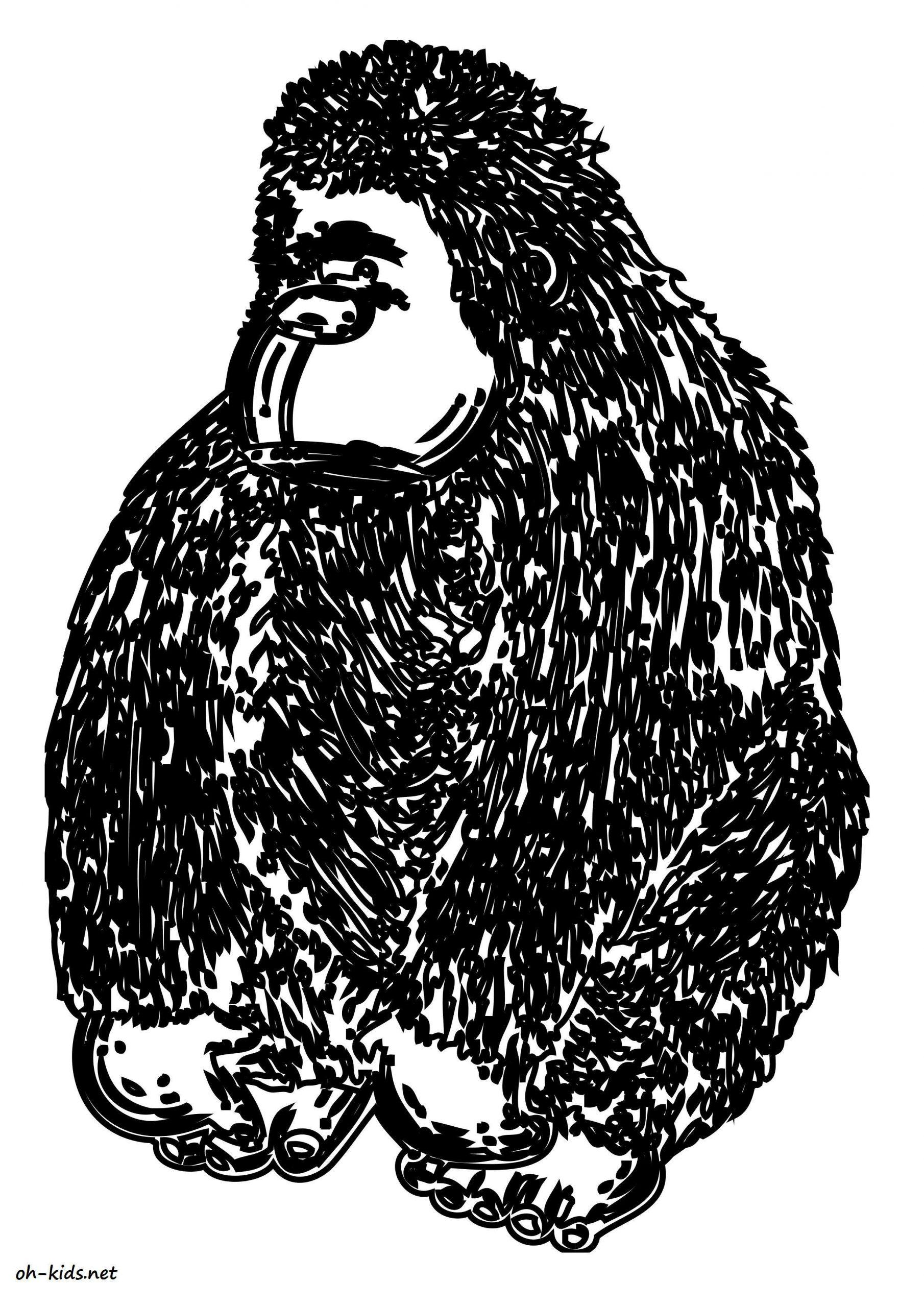 Dessin #1594 - Coloriage Gorille À Imprimer - Oh-Kids pour Coloriage Gorille