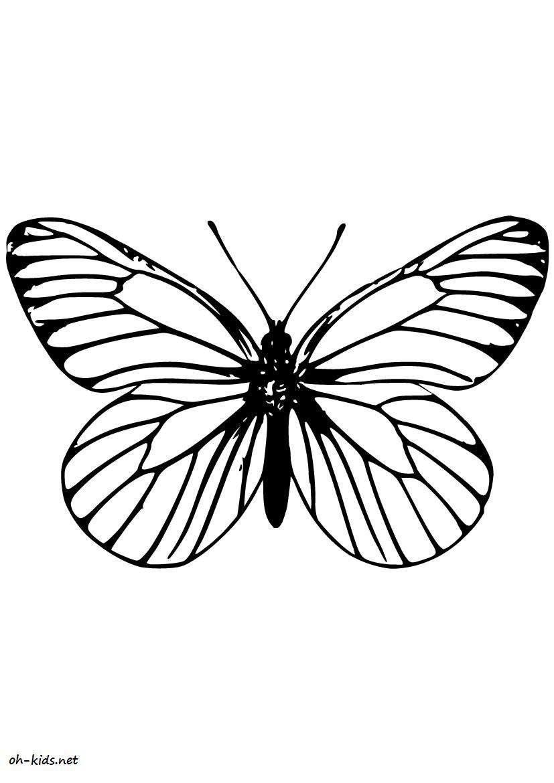 Dessin #477 - Coloriage Magnifique Papillon À Imprimer - Oh tout Papillon À Dessiner