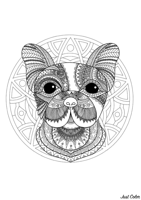 Dessin A Imprimer Mandala Animaux intérieur Mandala À Imprimer Facile
