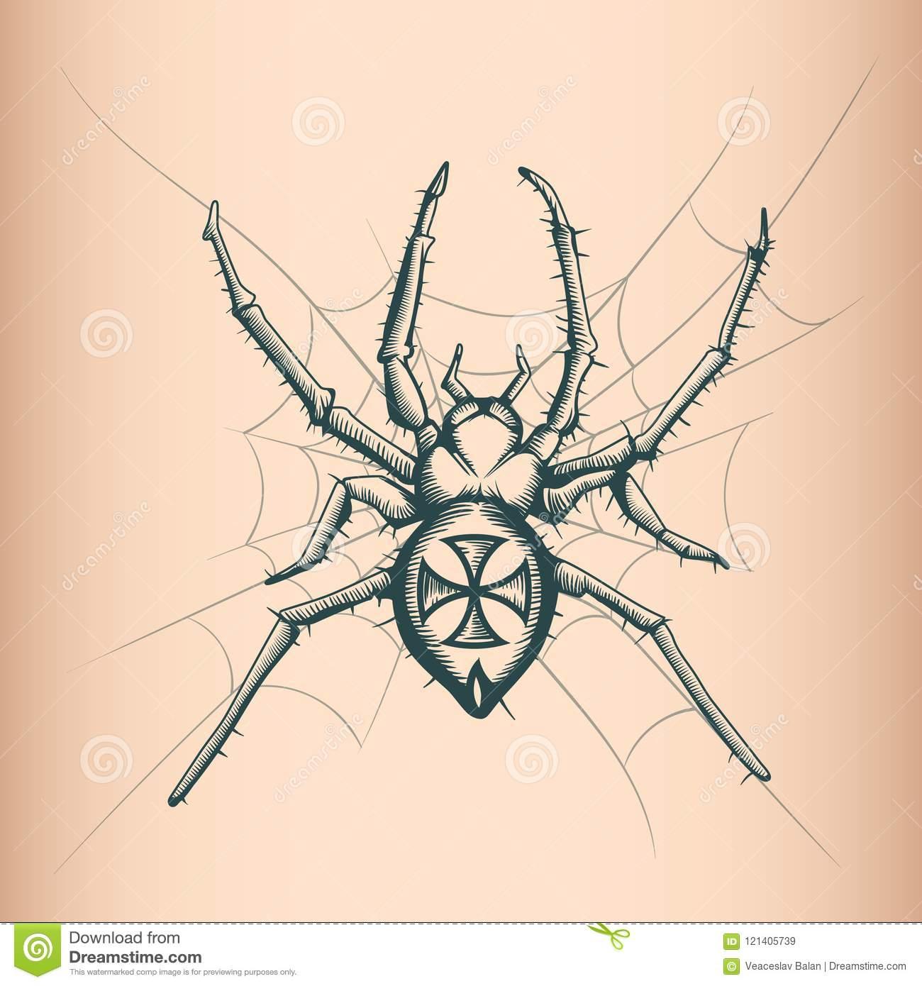 Dessin D'araignée De Vintage Style De Uage Illustration encequiconcerne Dessiner Une Araignee