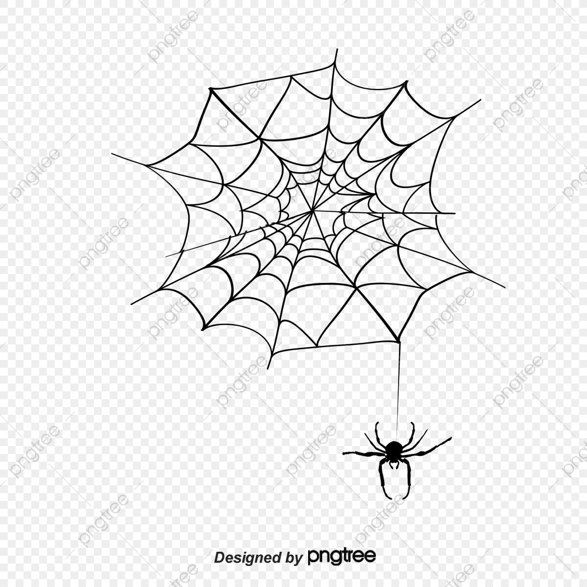 Dessin De Matériau De Toile D'araignée De Silhouette De L avec Dessiner Une Araignee