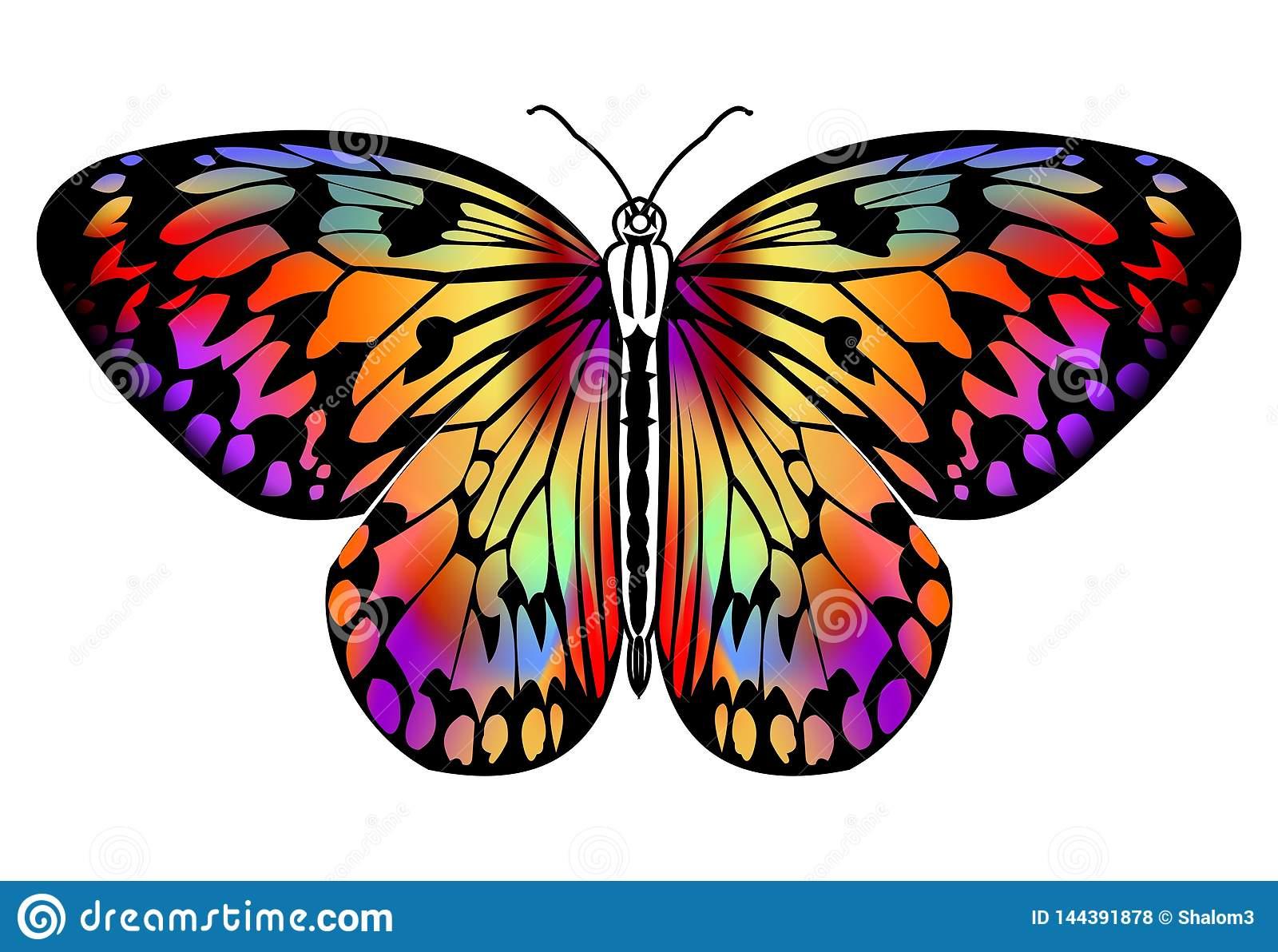 Dessin De Papillon Dans Des Couleurs Vives Dans Le Contour intérieur Papillon À Dessiner