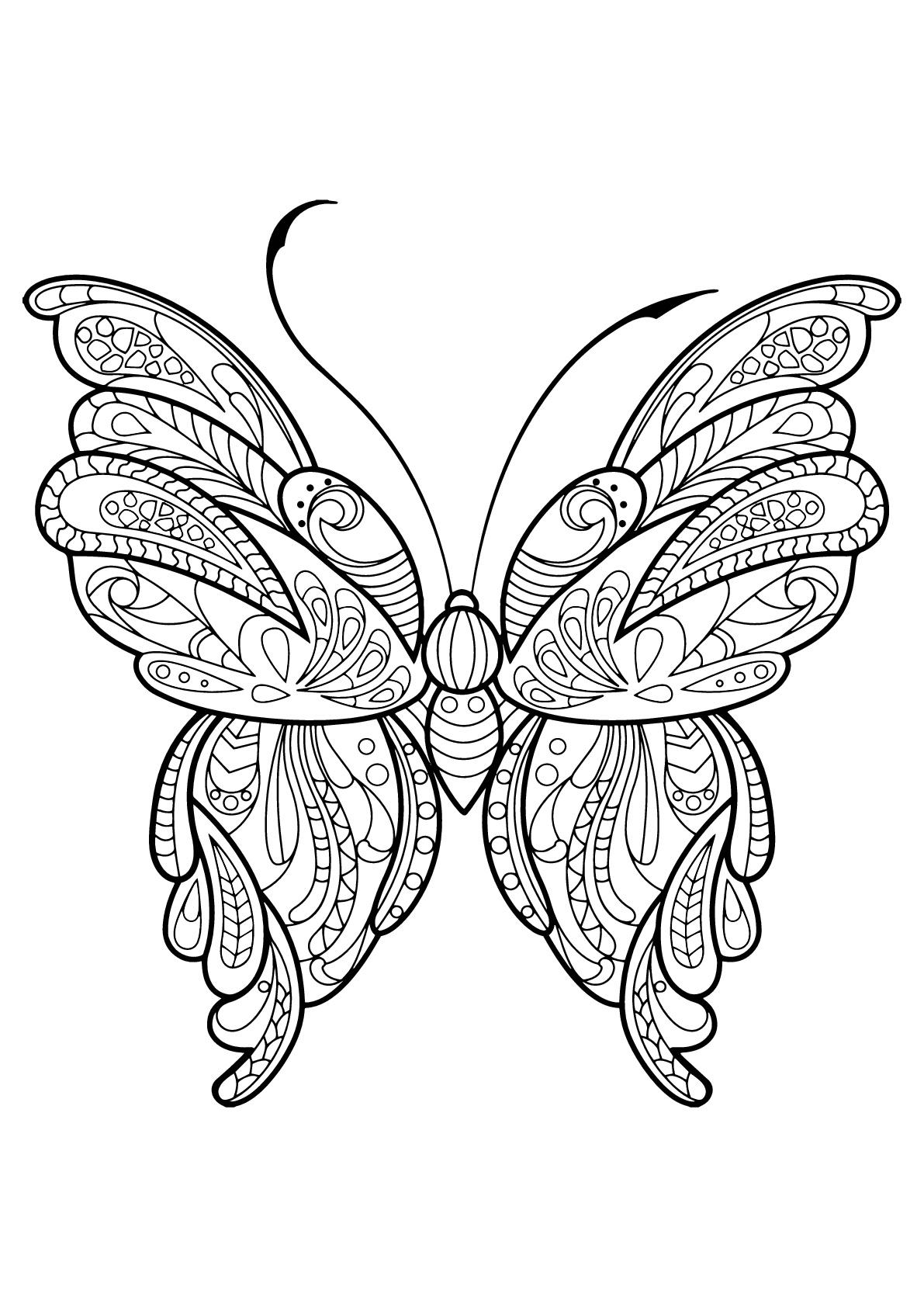 Dessin De Papillons Gratuit À Imprimer Et Colorier encequiconcerne Dessin Papillon À Colorier