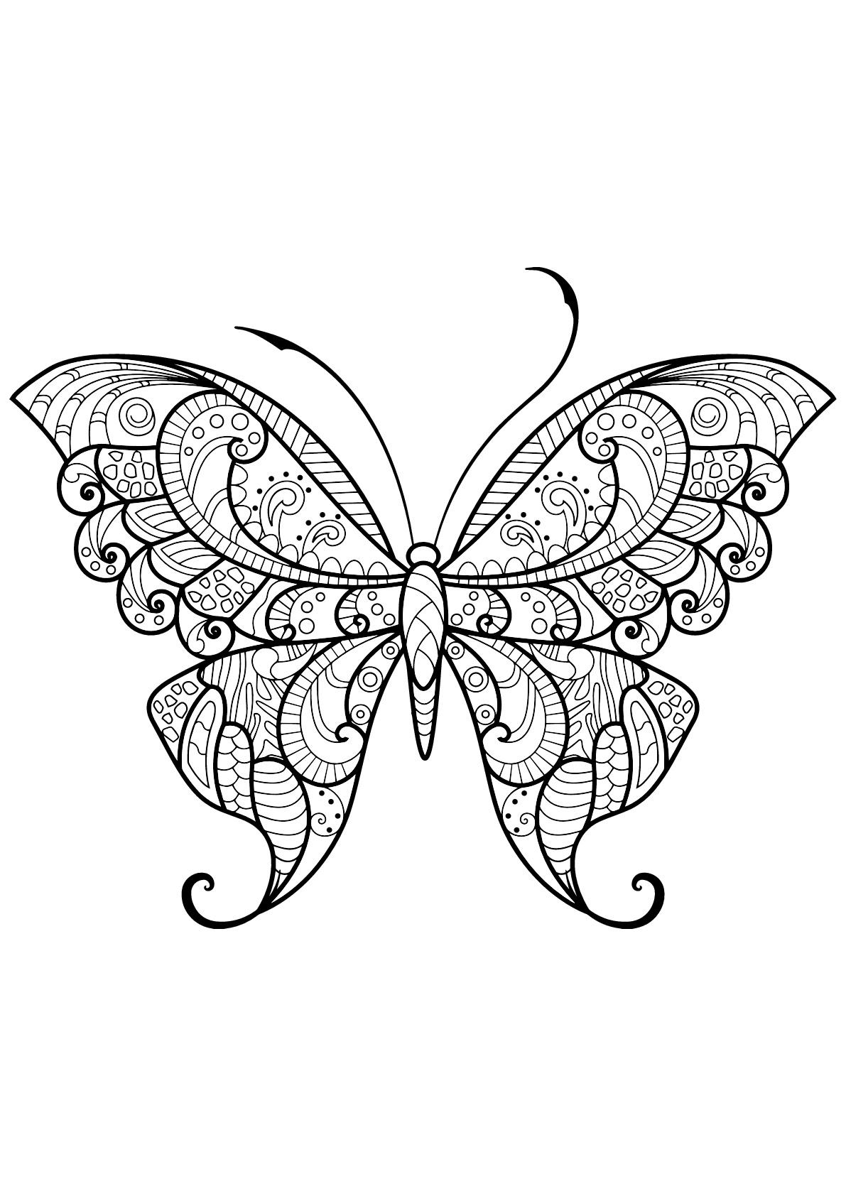 Dessin De Papillons Gratuit À Imprimer Et Colorier pour Dessin Papillon À Colorier