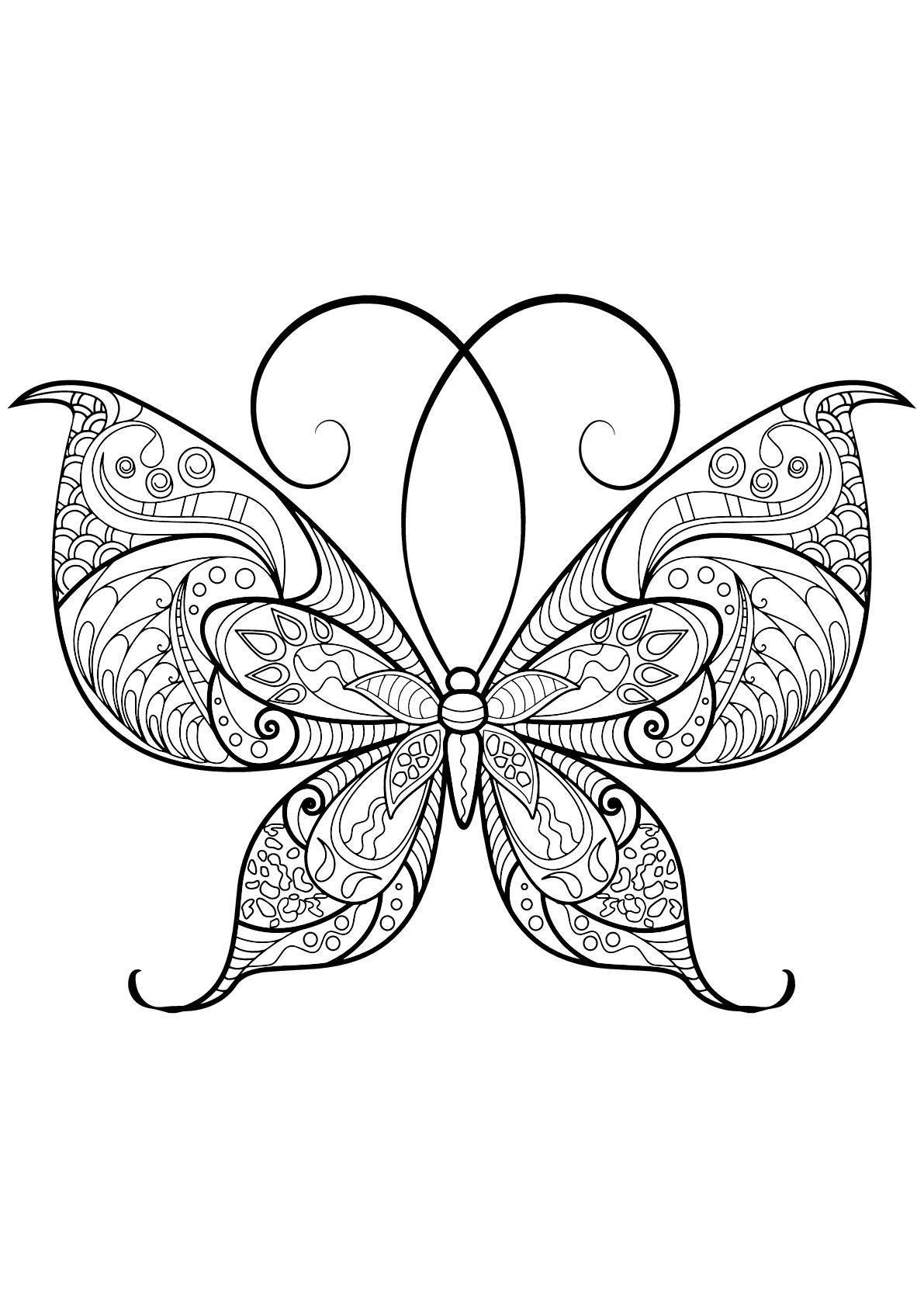 Dessin De Papillons Gratuit À Télécharger Et Colorier intérieur Dessin Papillon À Colorier