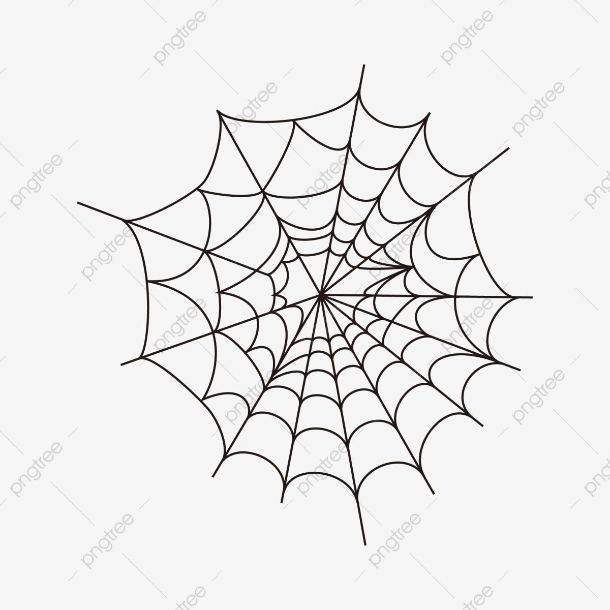Dessin De Toiles D'araignées En Matière De Toiles D tout Dessiner Une Araignee