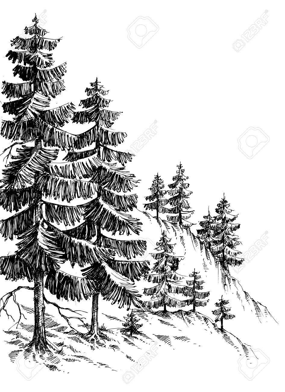 Dessin: Forêt De Pins, Montagne D'hiver Paysage Dessin encequiconcerne Dessin De Paysage D Hiver