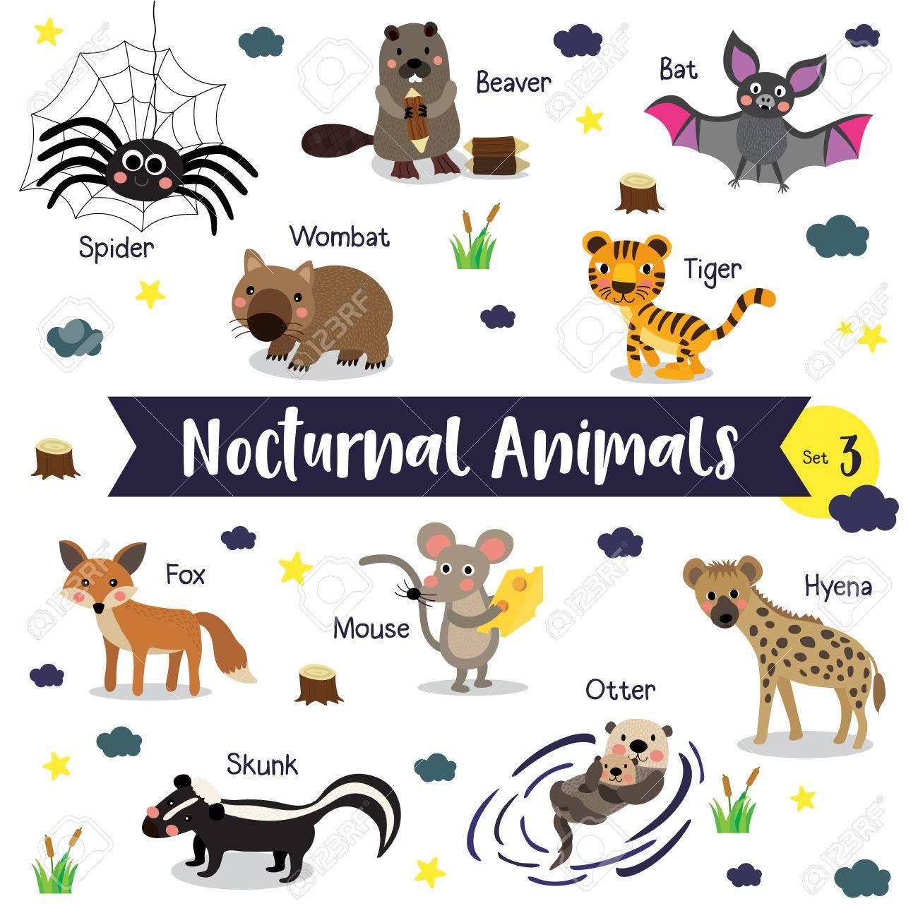 Dessins Animé D'animaux Nocturne Sur Fond Blanc Avec Le Nom D'animal.  Ensemble 3. avec Apprendre Le Nom Des Animaux
