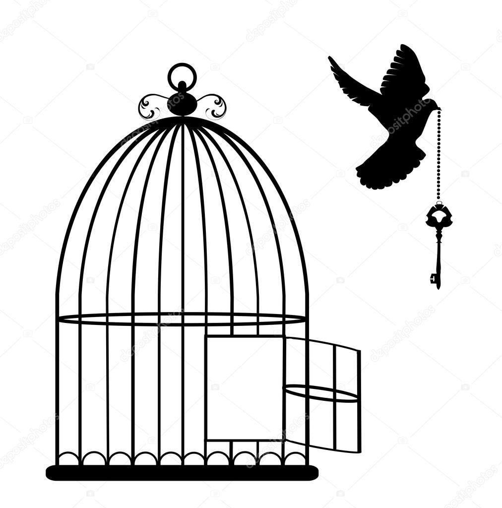 Dessins De Cage D'oiseaux - Yahoo Image Search Results dedans Dessin De Cage D Oiseau