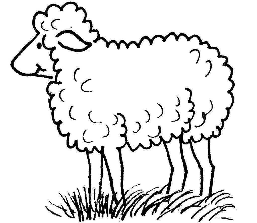 Dessins Gratuits À Colorier - Coloriage Mouton À Imprimer tout Photo De Mouton A Imprimer